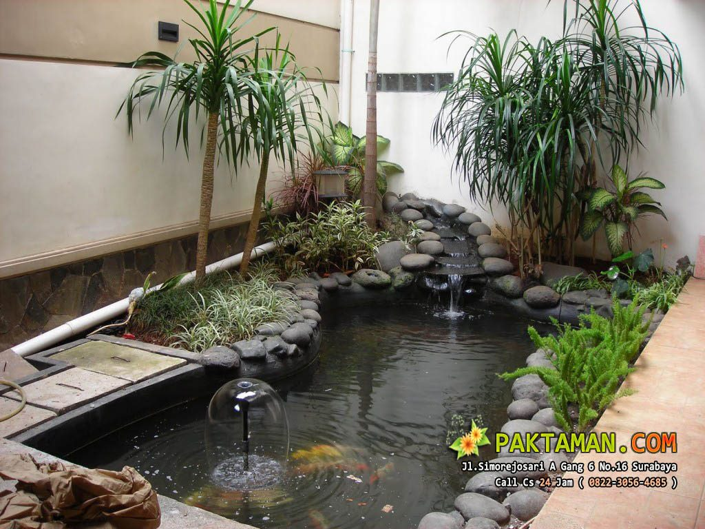 Jasa Kolam Ikan Minimalis Alami, Kolam Ikan Minimalis Alami, Tukang Kolam Ikan Minimalis Alami, Jasa Kolam Ikan Minimalis Alami Surabaya, Kolam Ikan Minimalis Alami Surabaya, Tukang Kolam Ikan Minimalis Alami Surabaya