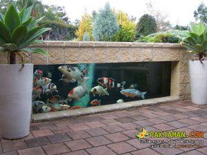 Kolam Ikan Minimalis Outdoor Bergaya Akuarium Rendah